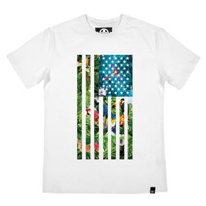 DDU-164 -TROPICAL FLAG-